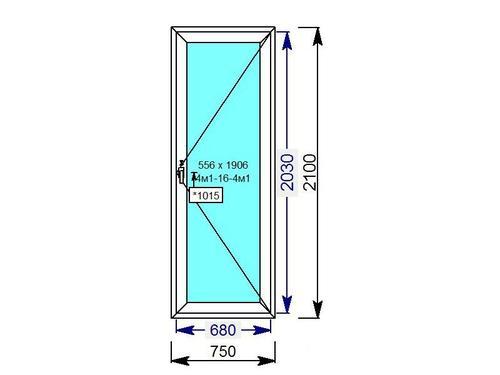 Дверь пластиковая одностворчатая со стеклопакетом во всю высоту